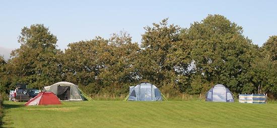 Camping Anglia