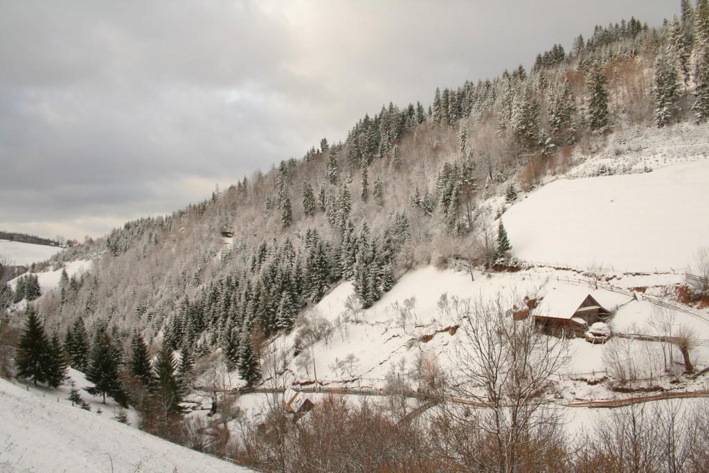 Iarna in Apuseni
