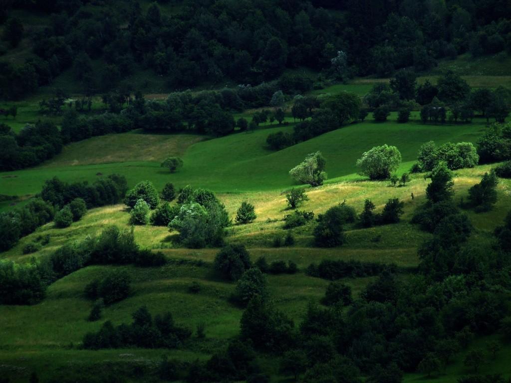 Romania - Tarnovita